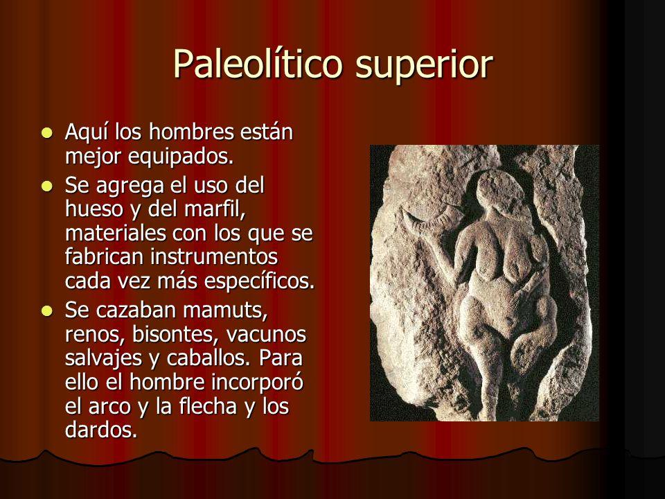 Paleolítico superior Aquí los hombres están mejor equipados.
