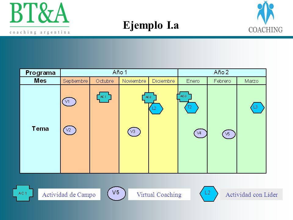 Ejemplo I.a Actividad de Campo Virtual Coaching Actividad con Líder