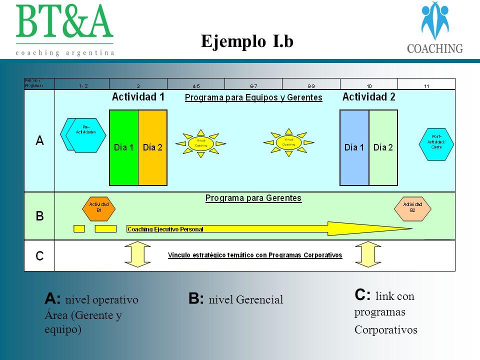 Ejemplo I.b C: link con programas Corporativos