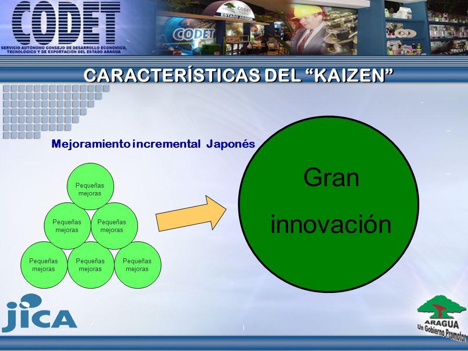 PRINCIPIOS DEL KAIZEN Es un proceso orientado al mejoramiento
