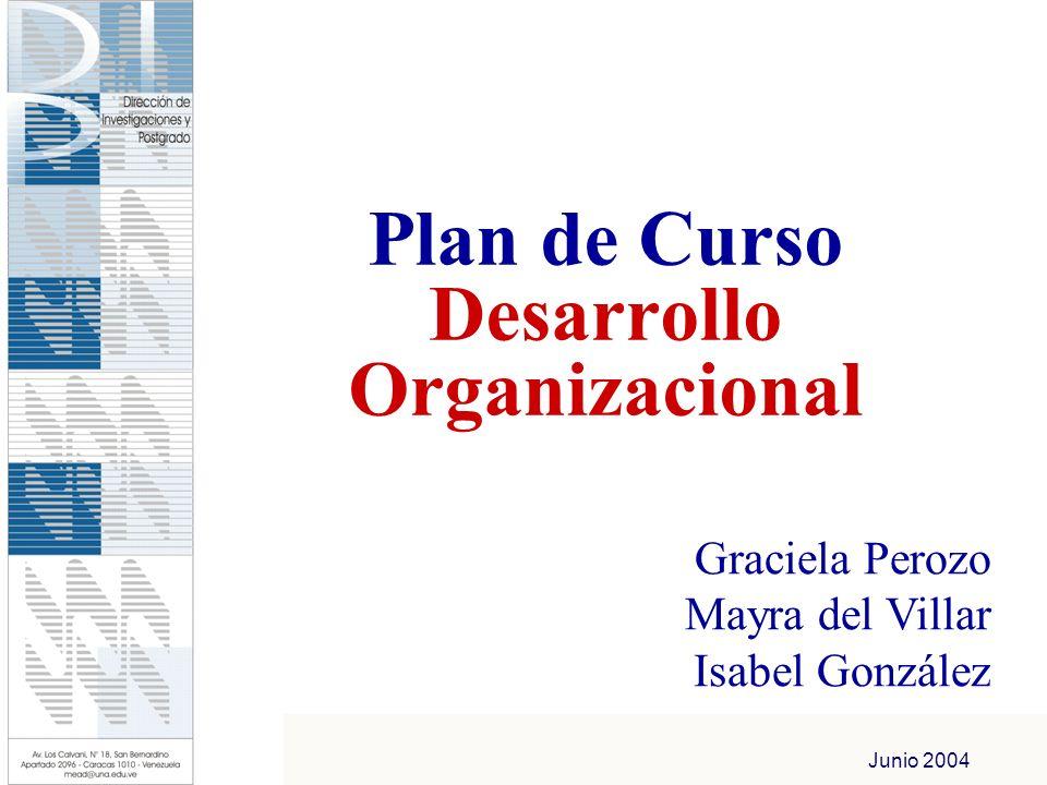 Plan de Curso Desarrollo Organizacional