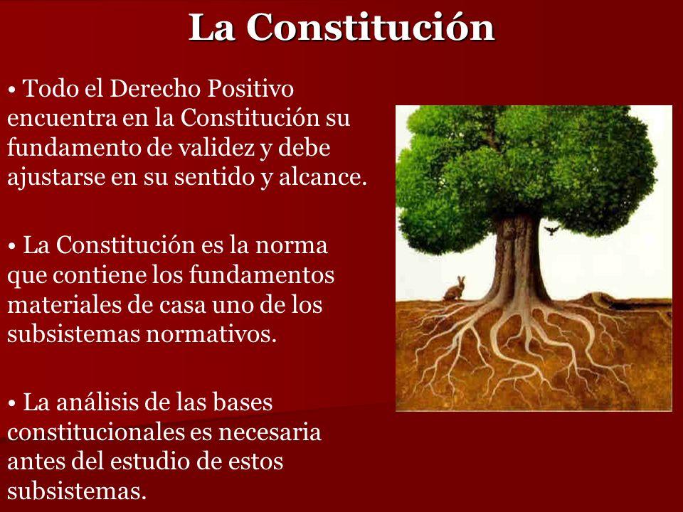 La Constitución Todo el Derecho Positivo encuentra en la Constitución su fundamento de validez y debe ajustarse en su sentido y alcance.
