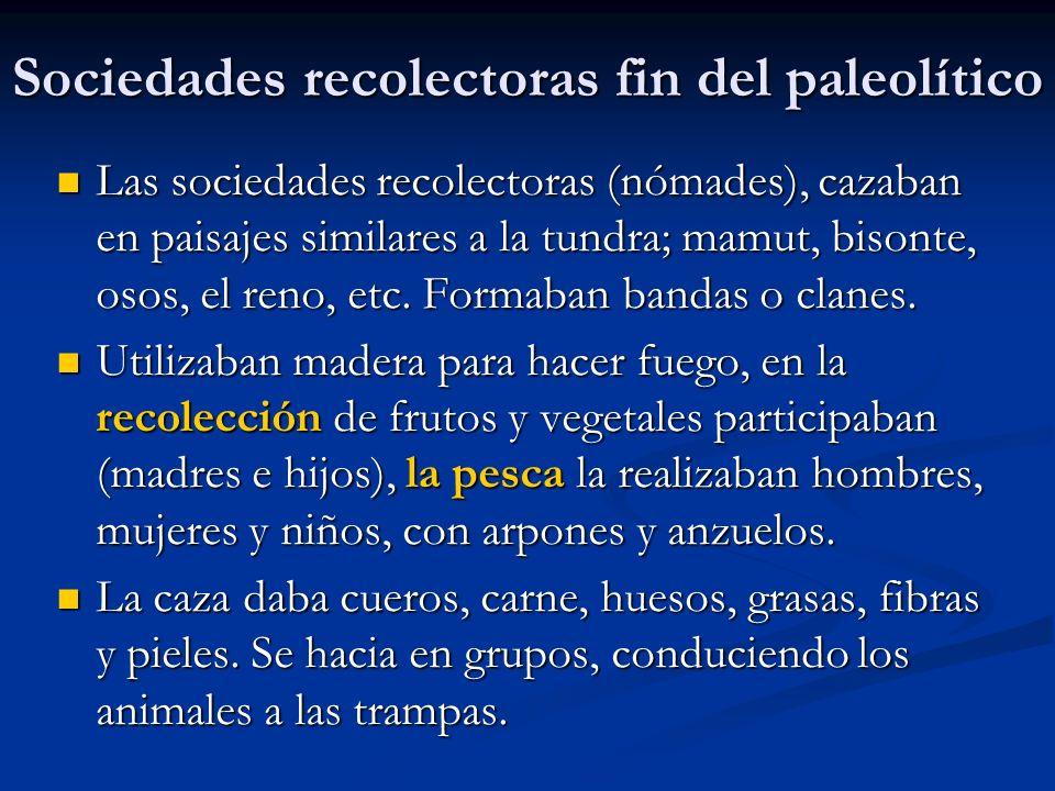 Sociedades recolectoras fin del paleolítico