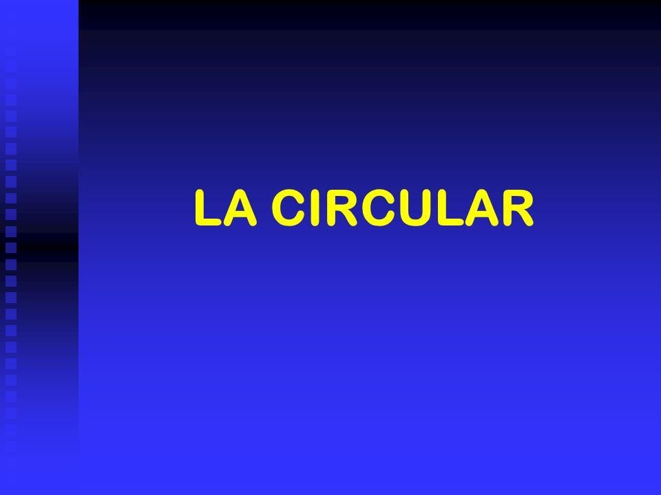 LA CIRCULAR