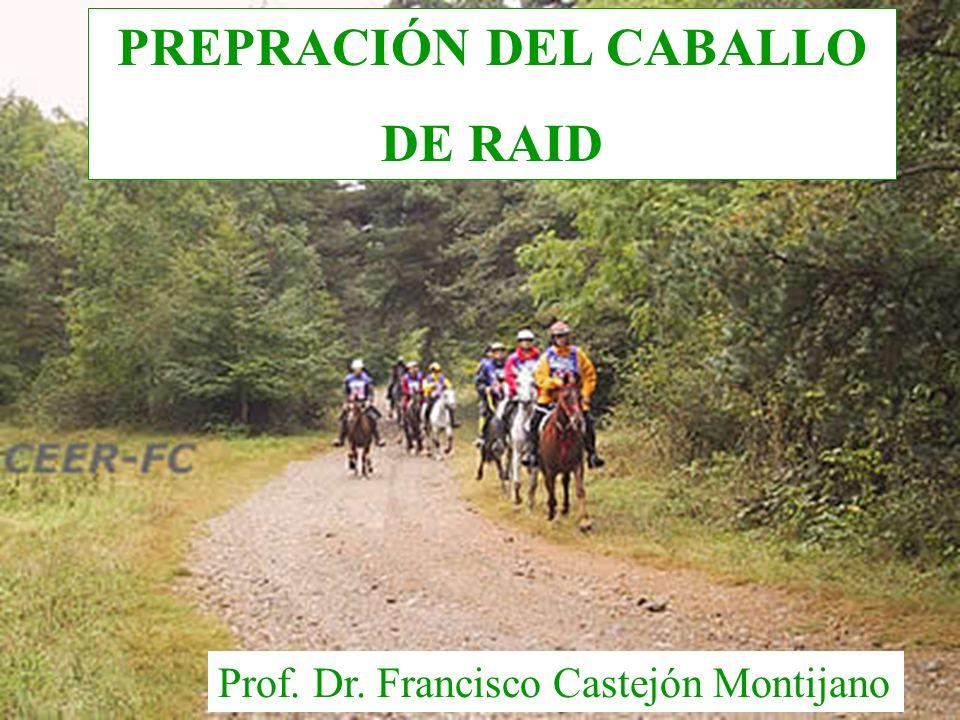 PREPRACIÓN DEL CABALLO