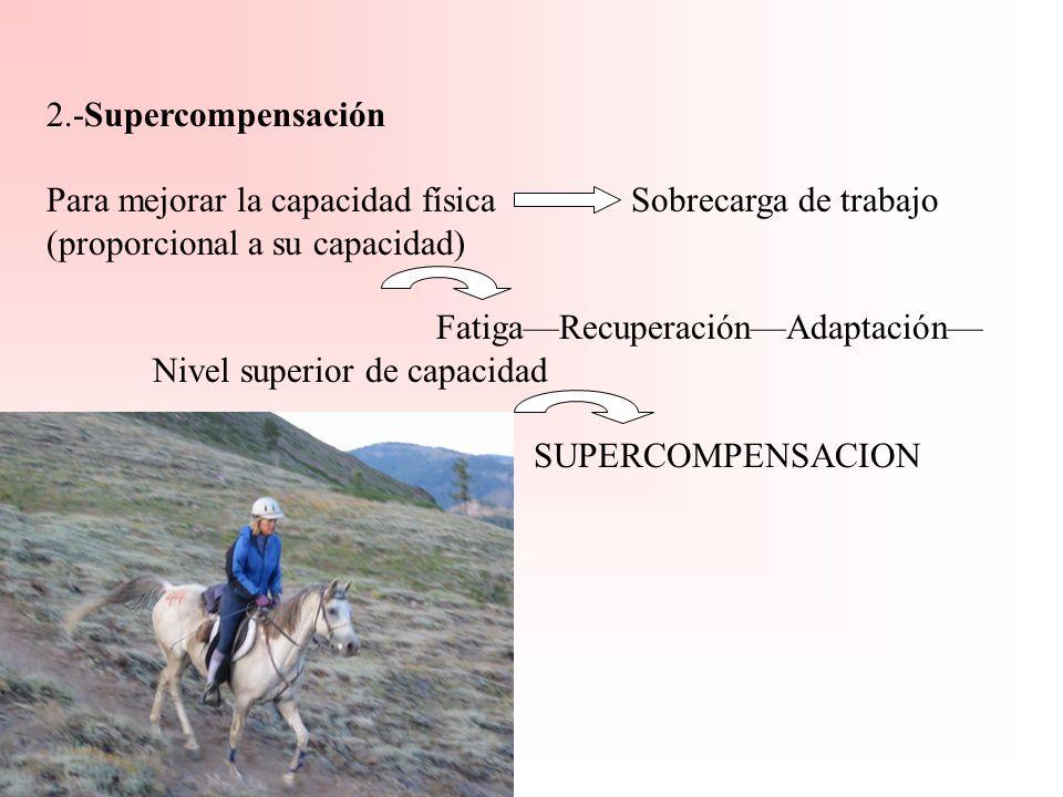2.-SupercompensaciónPara mejorar la capacidad física Sobrecarga de trabajo (proporcional a su capacidad)