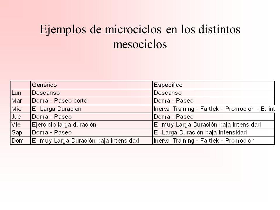 Ejemplos de microciclos en los distintos mesociclos