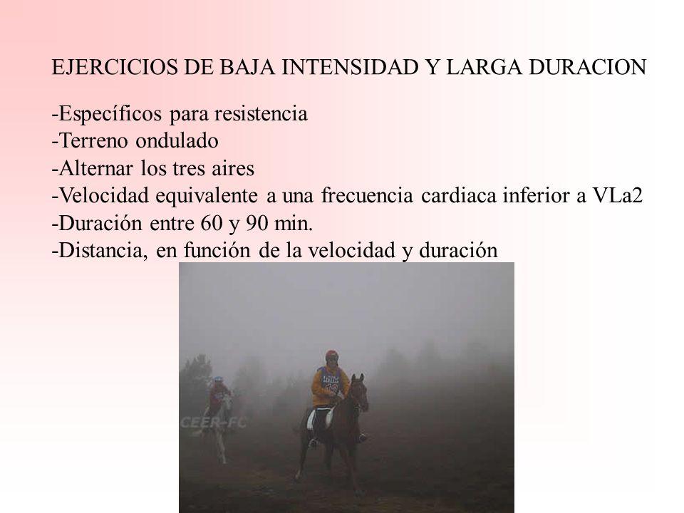 EJERCICIOS DE BAJA INTENSIDAD Y LARGA DURACION