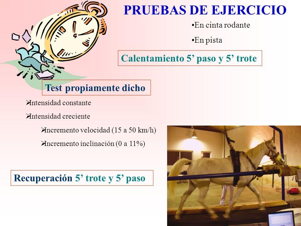 PRUEBAS DE EJERCICIO Calentamiento 5' paso y 5' trote