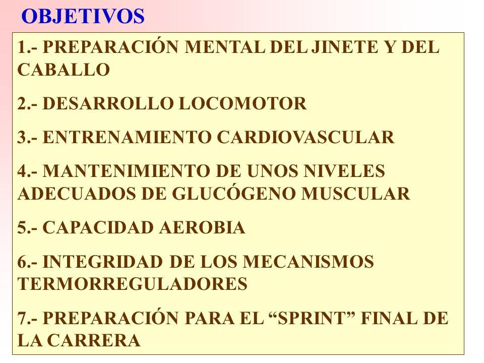 OBJETIVOS 1.- PREPARACIÓN MENTAL DEL JINETE Y DEL CABALLO