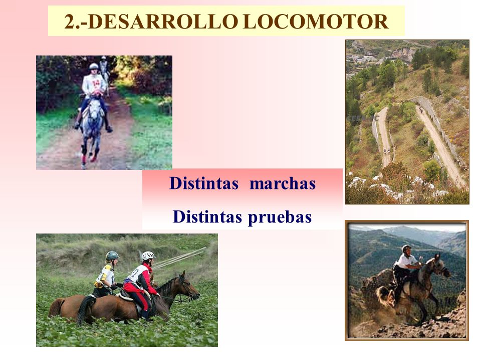 2.-DESARROLLO LOCOMOTOR