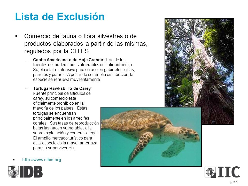 Lista de Exclusión Comercio de fauna o flora silvestres o de productos elaborados a partir de las mismas, regulados por la CITES.