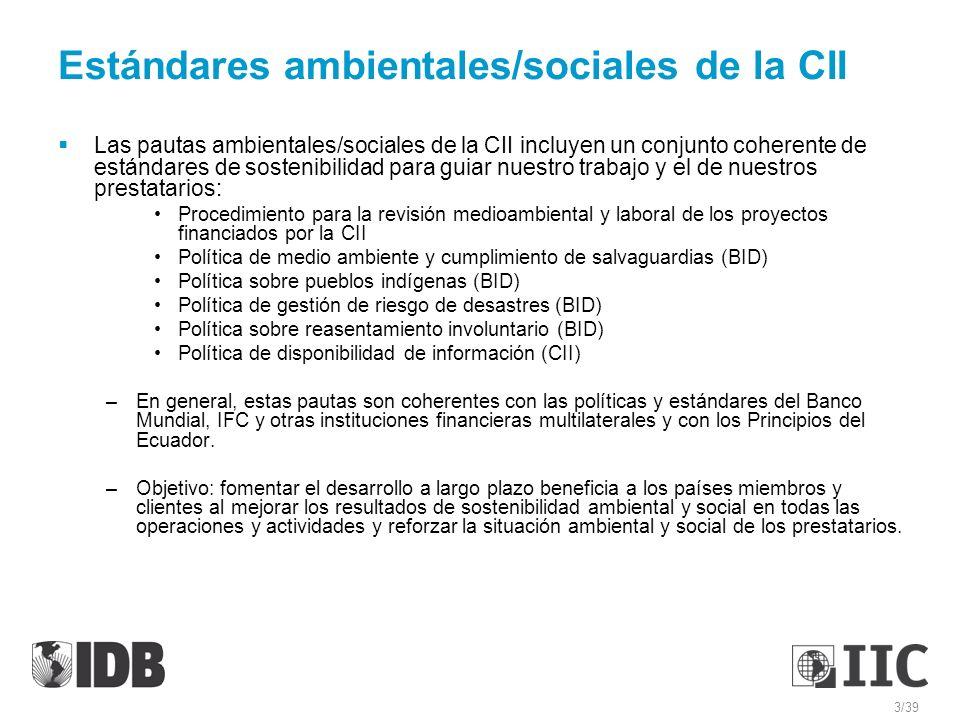 Estándares ambientales/sociales de la CII