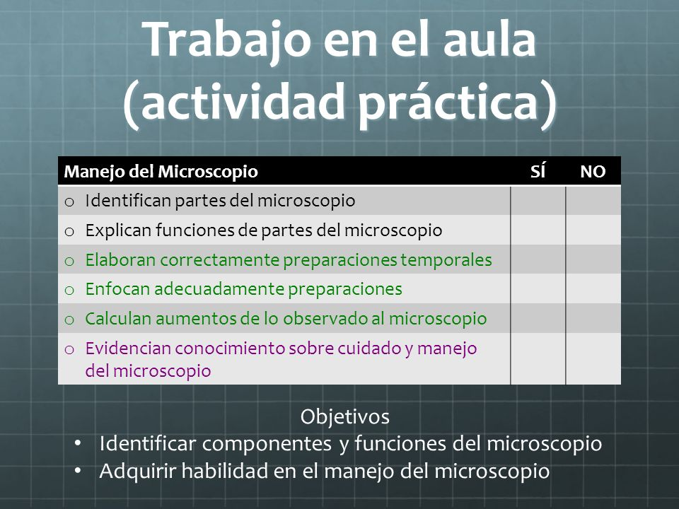 Trabajo en el aula (actividad práctica)