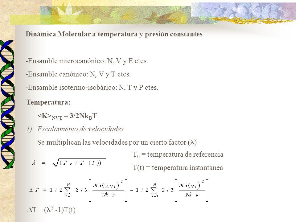 Dinámica Molecular a temperatura y presión constantes