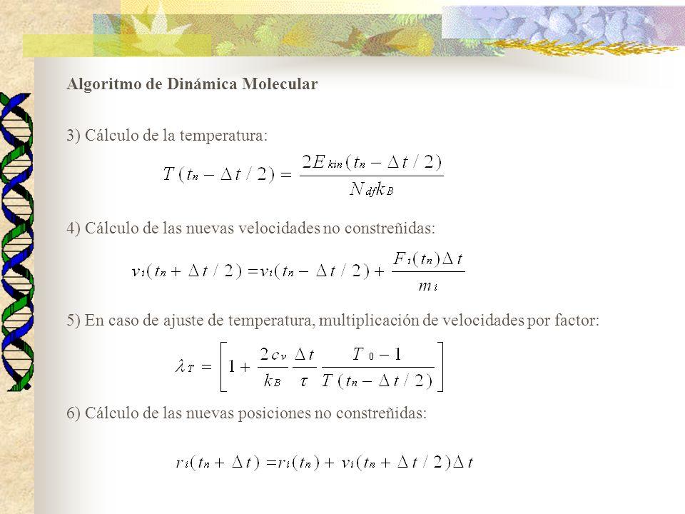 Algoritmo de Dinámica Molecular