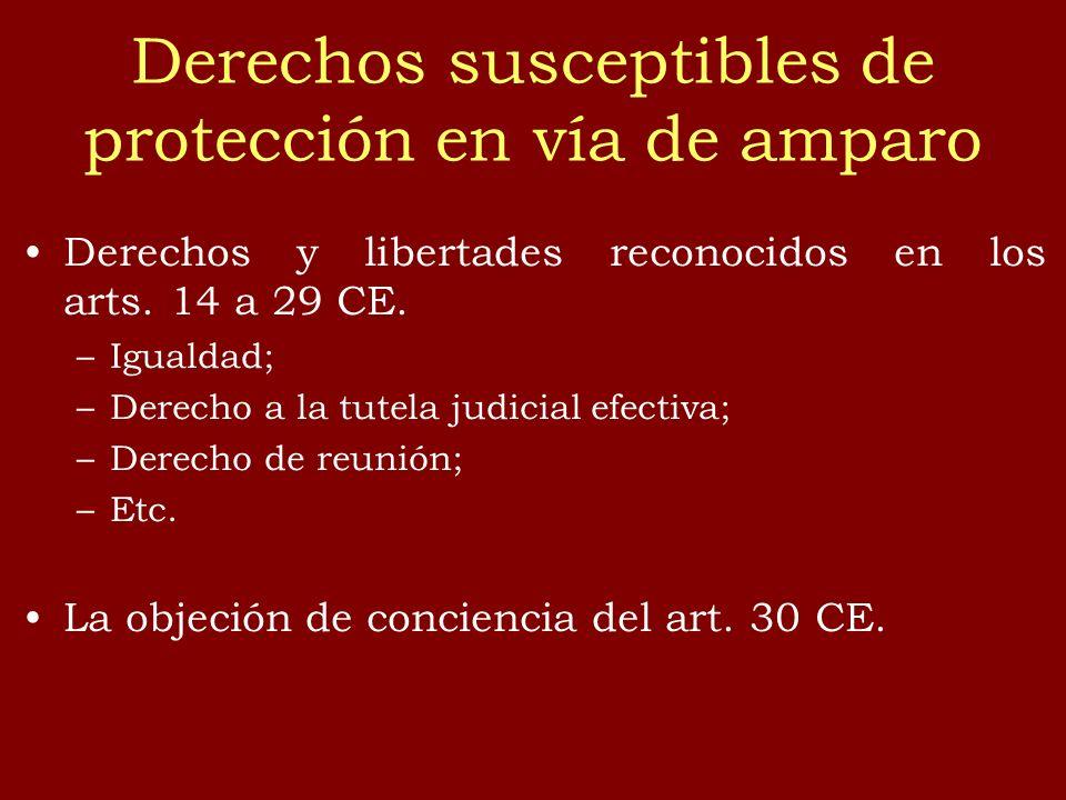 Derechos susceptibles de protección en vía de amparo