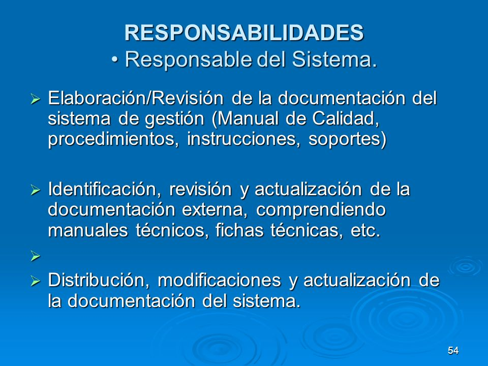 RESPONSABILIDADES • Responsable del Sistema.