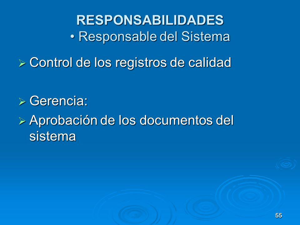 RESPONSABILIDADES • Responsable del Sistema