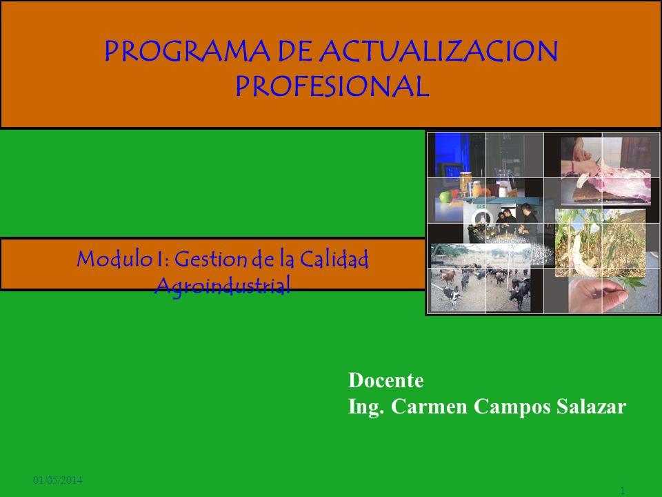 PROGRAMA DE ACTUALIZACION PROFESIONAL