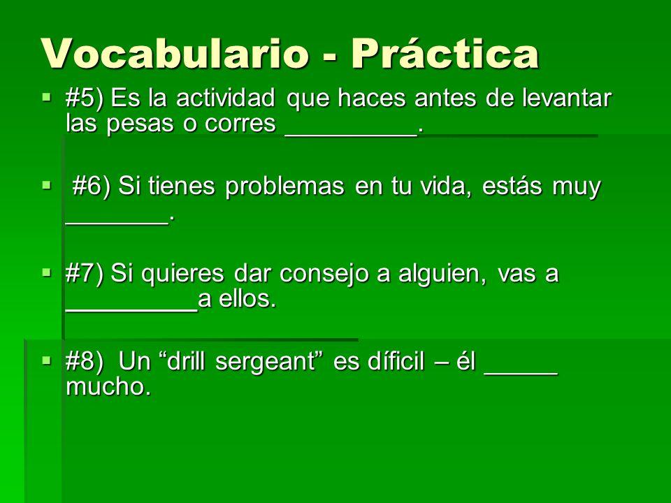 Vocabulario - Práctica