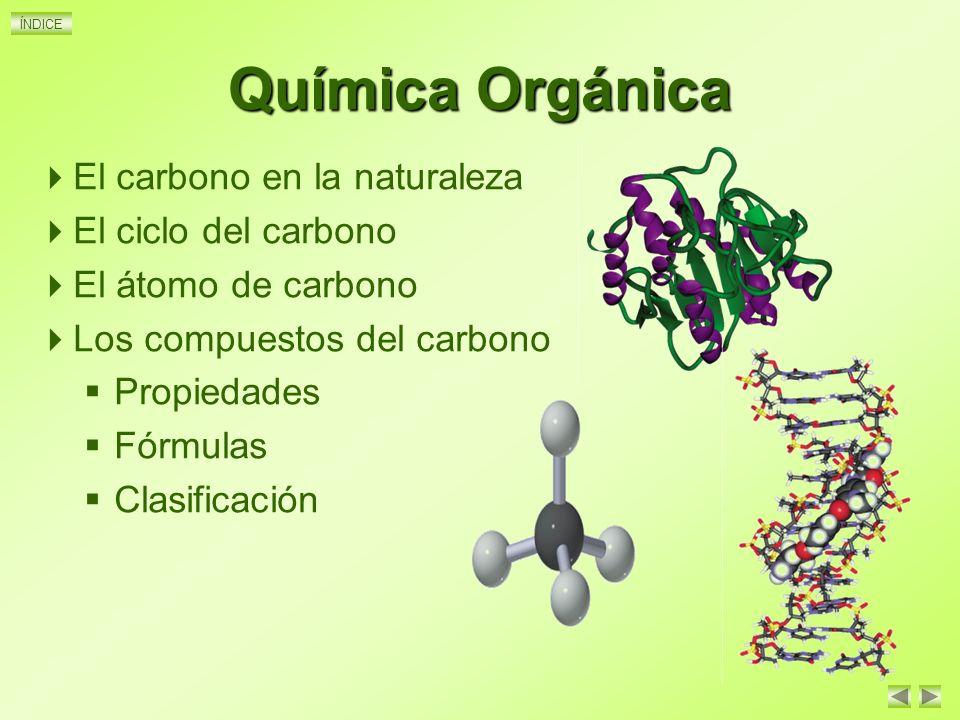 Qu mica organica 1 introduccion atomo de carbono for La quimica en la gastronomia