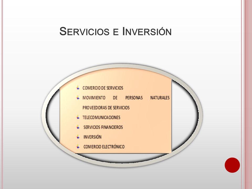 Servicios e Inversión