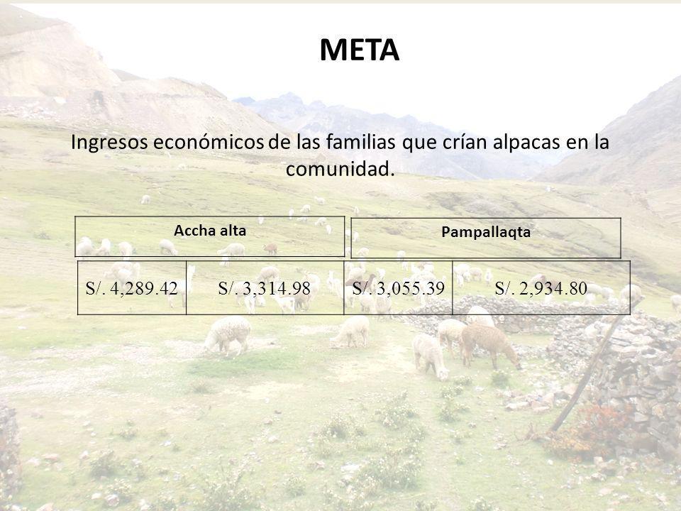 Ingresos económicos de las familias que crían alpacas en la comunidad.