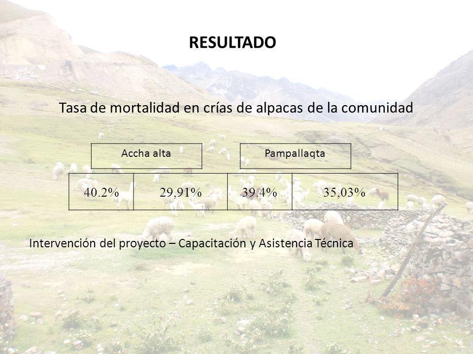 Tasa de mortalidad en crías de alpacas de la comunidad