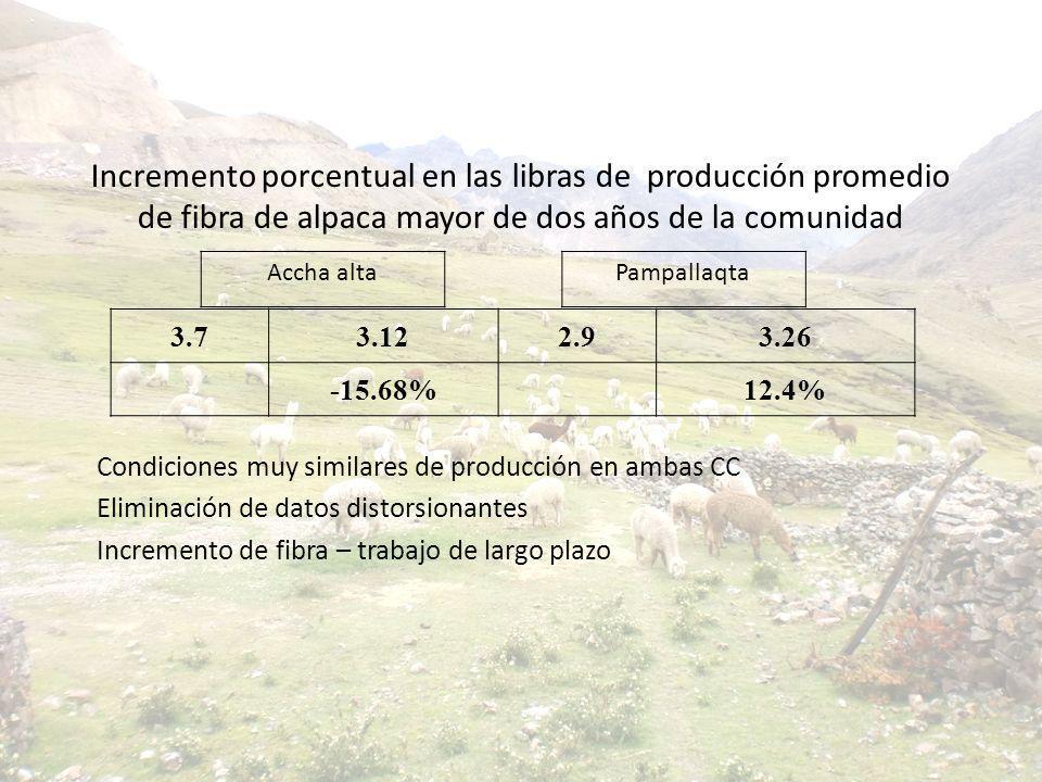Incremento porcentual en las libras de producción promedio de fibra de alpaca mayor de dos años de la comunidad