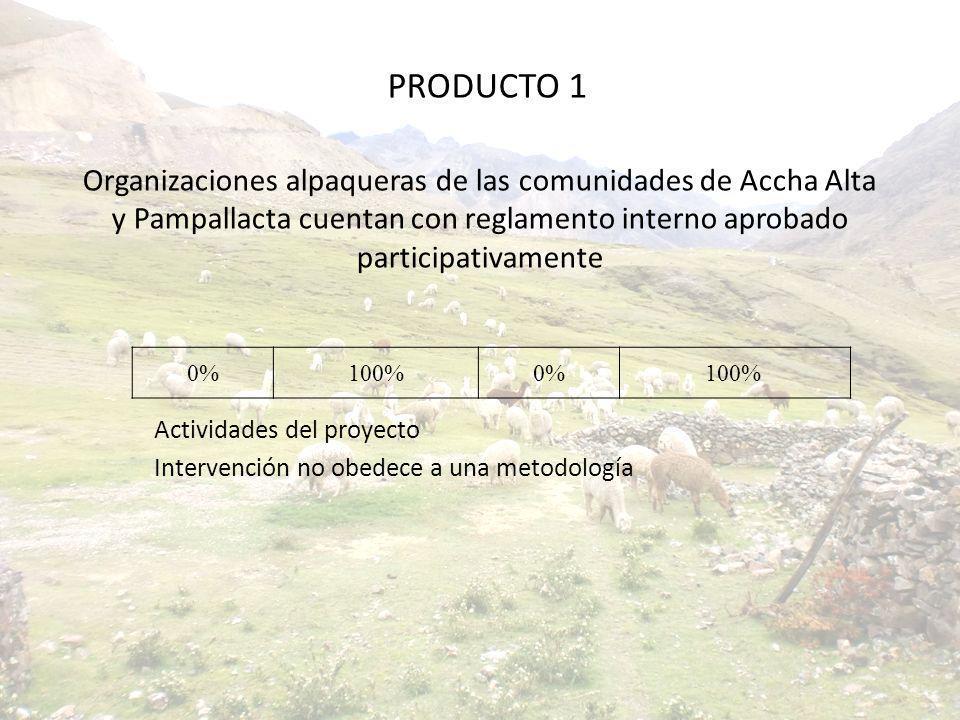 Actividades del proyecto Intervención no obedece a una metodología