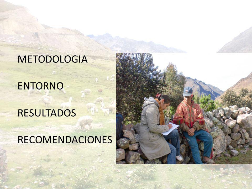 METODOLOGIA ENTORNO RESULTADOS RECOMENDACIONES