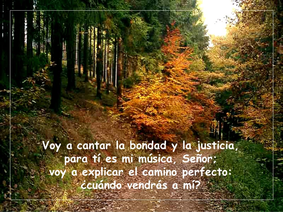 Voy a cantar la bondad y la justicia, para tí es mi música, Señor;