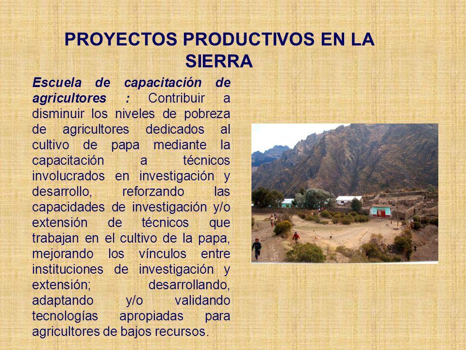 PROYECTOS PRODUCTIVOS EN LA SIERRA