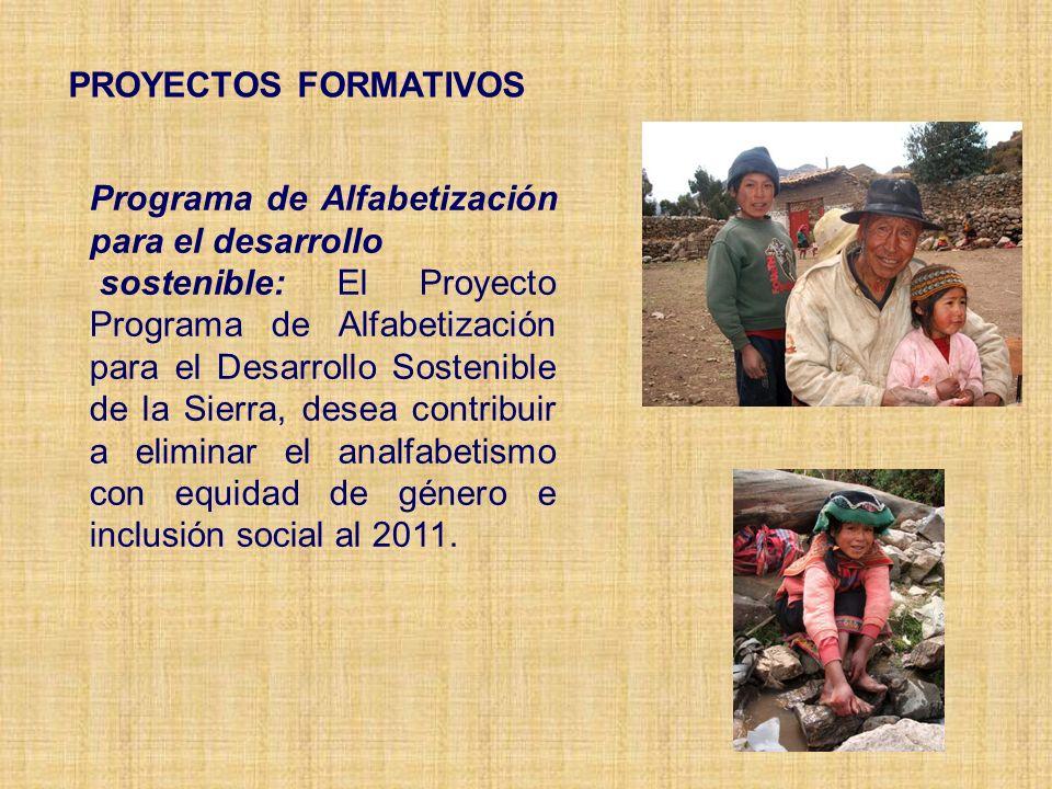 PROYECTOS FORMATIVOS Programa de Alfabetización para el desarrollo.