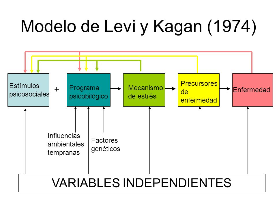 Modelo de Levi y Kagan (1974)