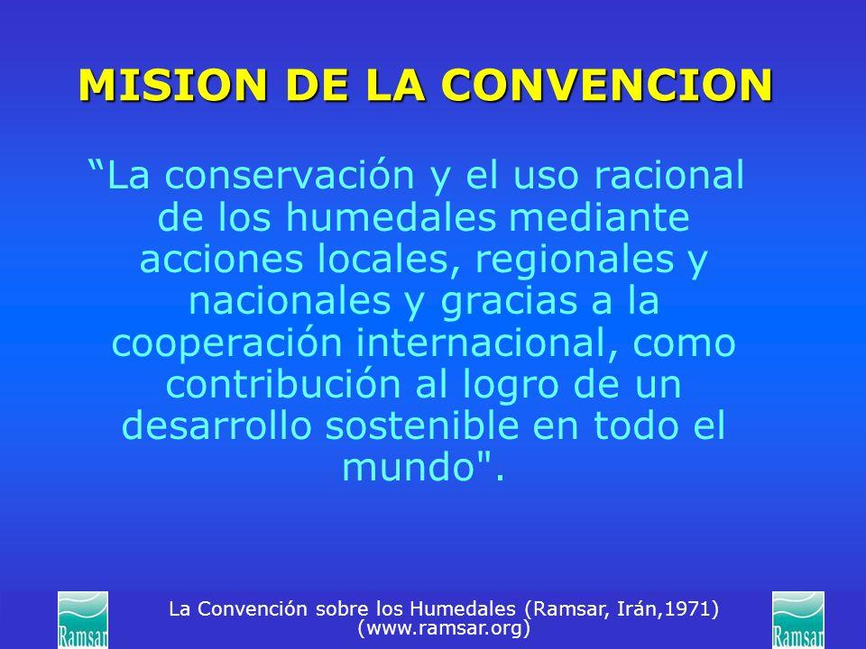 MISION DE LA CONVENCION