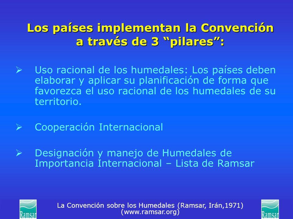 Los países implementan la Convención a través de 3 pilares :