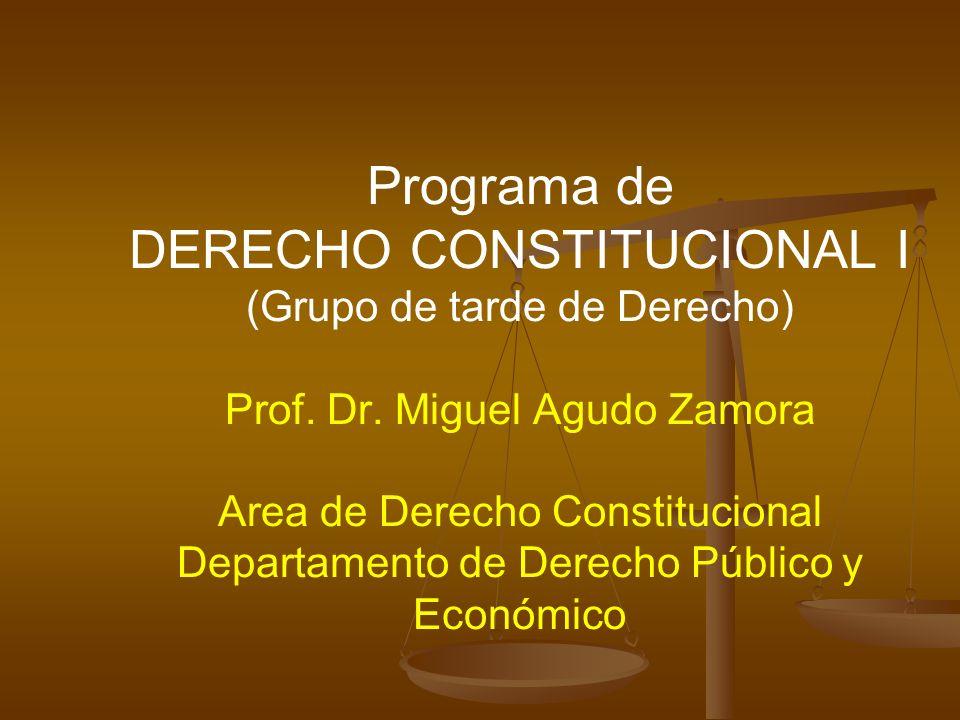 Programa de DERECHO CONSTITUCIONAL I (Grupo de tarde de Derecho) Prof