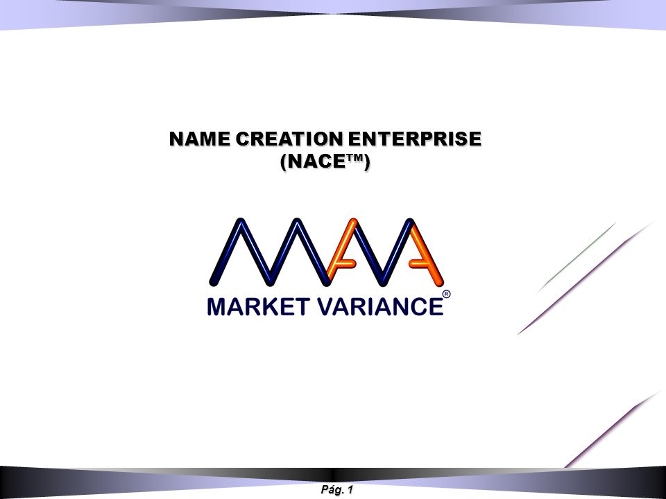 NAME CREATION ENTERPRISE (NACE™)