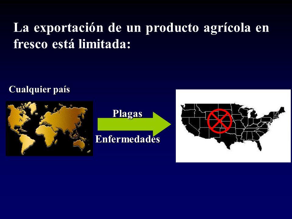 La exportación de un producto agrícola en fresco está limitada: