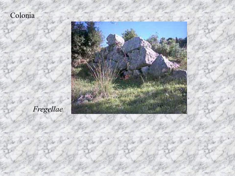 Colonia Fregellae