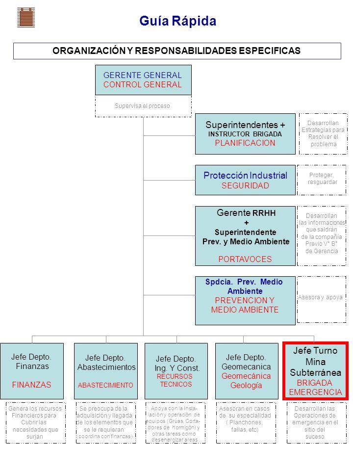 ORGANIZACIÓN Y RESPONSABILIDADES ESPECIFICAS