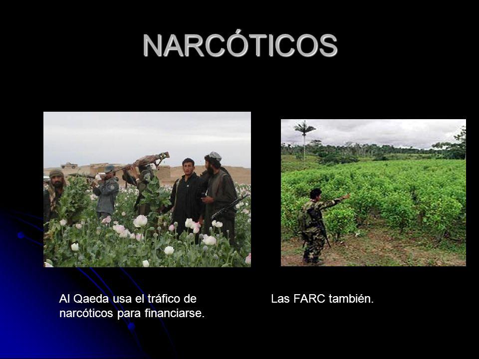 NARCÓTICOS Al Qaeda usa el tráfico de narcóticos para financiarse.