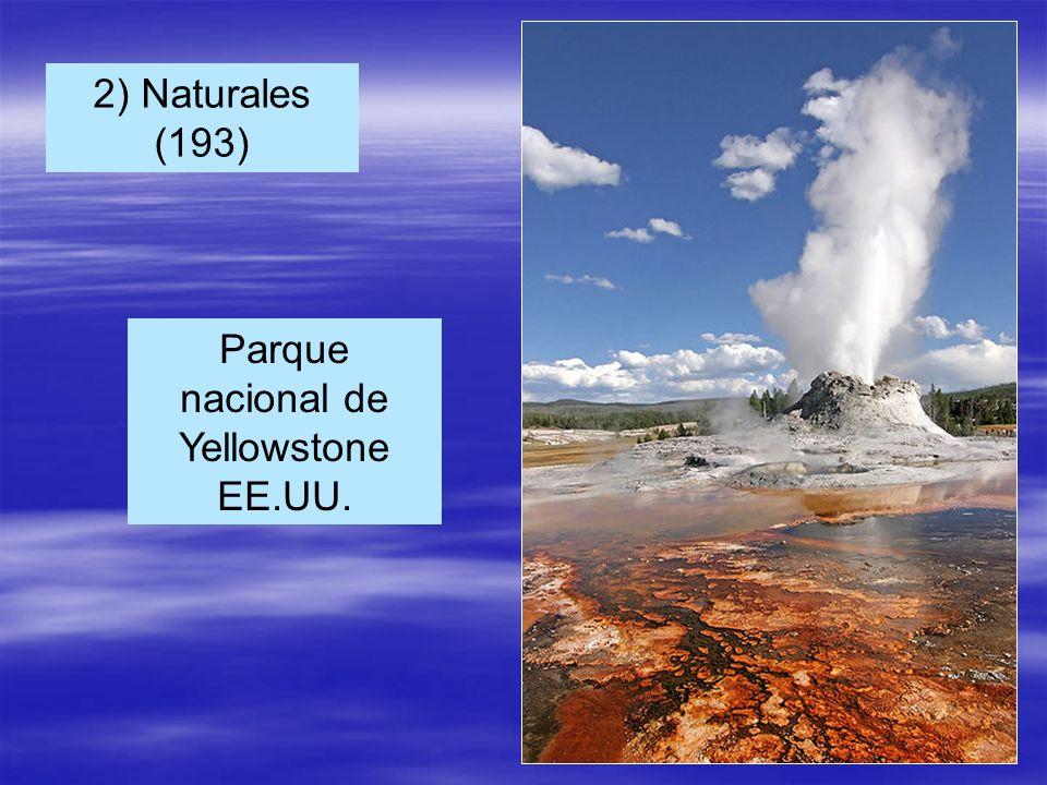 Parque nacional de Yellowstone EE.UU.