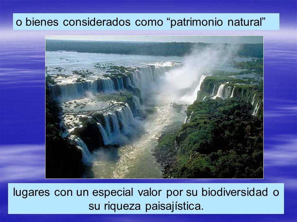 o bienes considerados como patrimonio natural