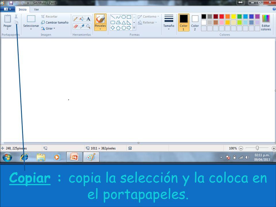 Copiar : copia la selección y la coloca en el portapapeles.