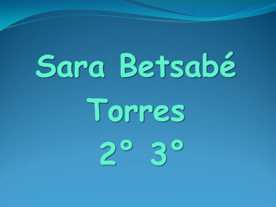 Sara Betsabé Torres 2° 3°