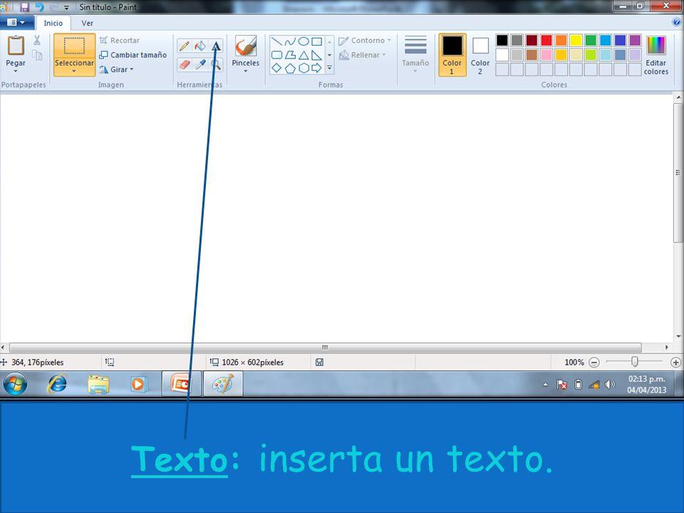 Texto: inserta un texto.