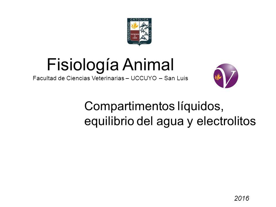Fisiología Animal Facultad de Ciencias Veterinarias – UCCUYO – San Luis